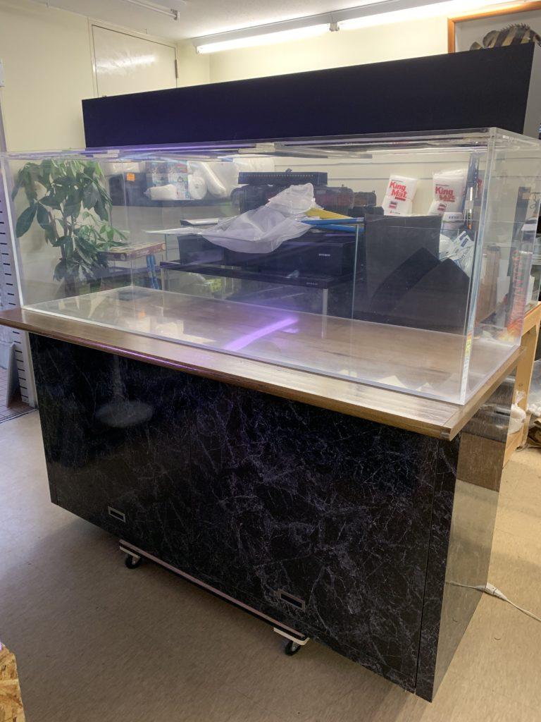 1800水槽入荷!!|アクアライク|愛知県安城市|水槽販売・買取/大型魚(熱帯魚)販売/淡水エイ