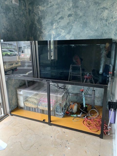 1800-900-600水槽設置!!|アクアライク|愛知県安城市|水槽販売・買取/大型魚(熱帯魚)販売/淡水エイ