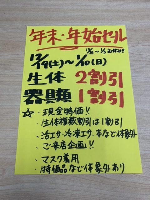 年末年始セール!!|アクアライク|愛知県安城市|水槽販売・買取/大型魚(熱帯魚)販売/淡水エイ