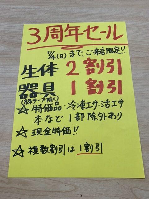 7/4までセール中!!|アクアライク|愛知県安城市|水槽販売・買取/大型魚(熱帯魚)販売/淡水エイ